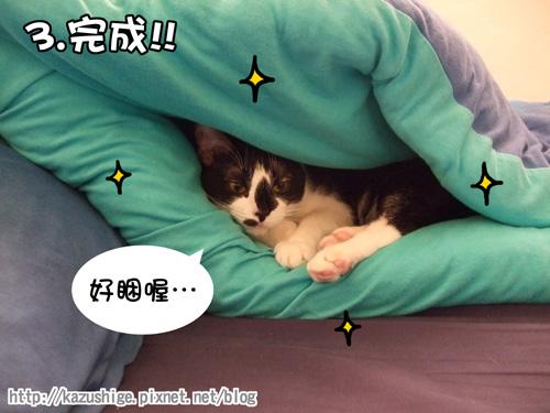 貓咪三明治3.jpg