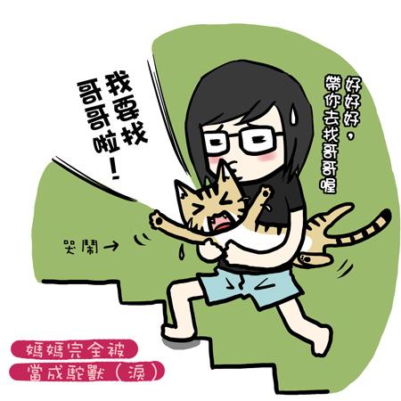 街頭巷尾貓9-1.jpg