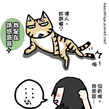 街頭巷尾貓9-3.jpg
