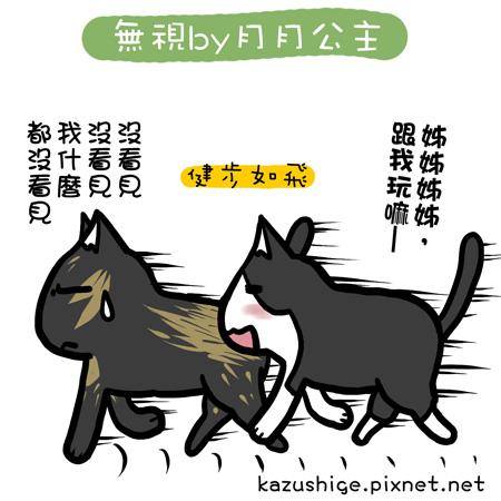 貓奴26-2.jpg