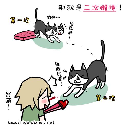 貓奴34-1