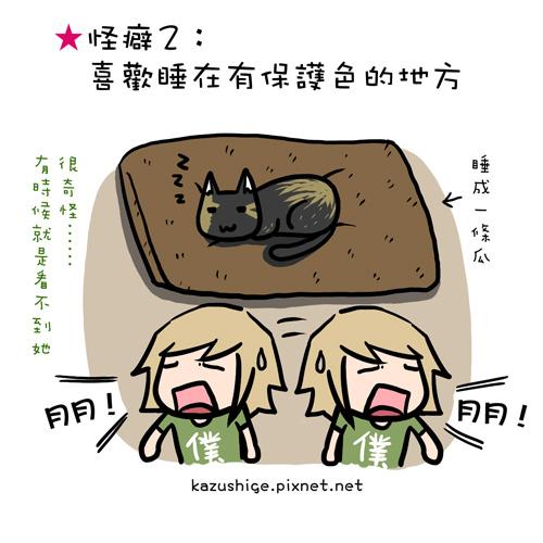 貓奴36-2