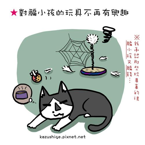 貓奴37-1