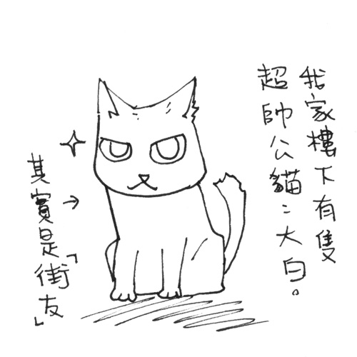 貓奴40-1