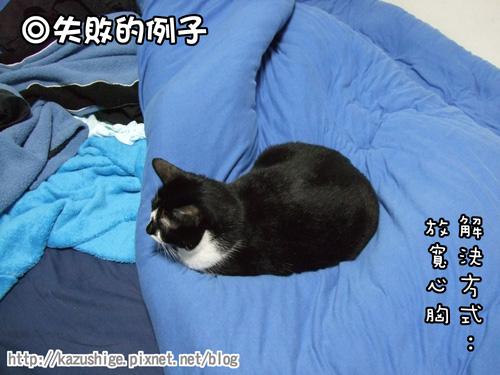 貓咪三明治5.jpg