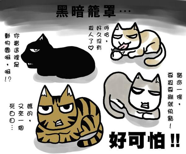 貓奴3.jpg