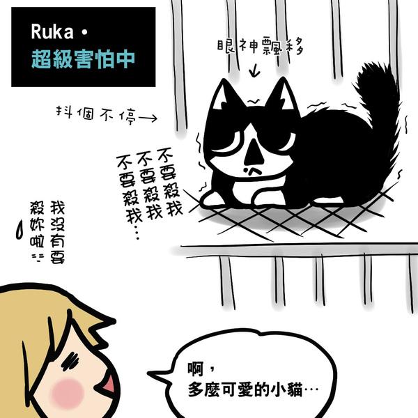 貓奴2-4.jpg