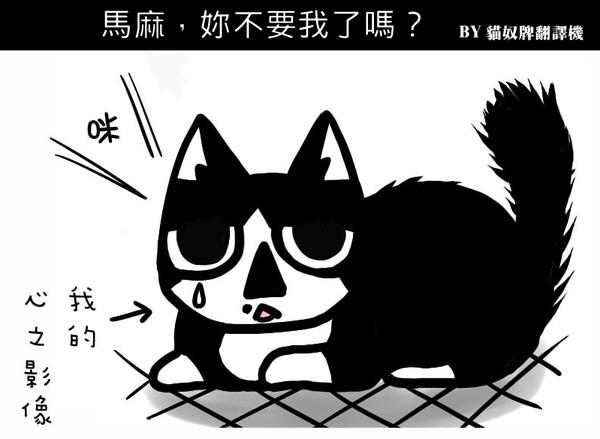 貓奴2-5.jpg