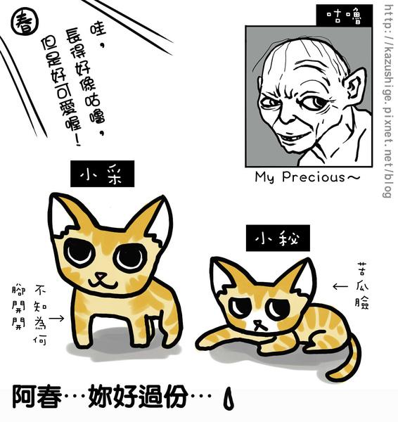 貓奴5-1.jpg