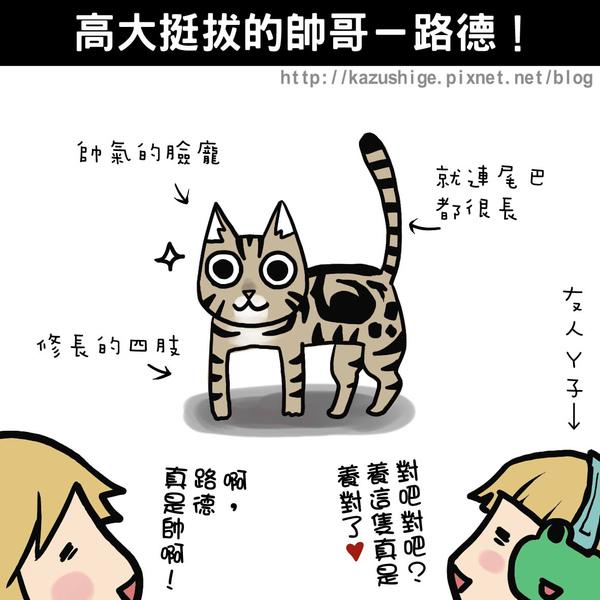 貓奴9-3.jpg