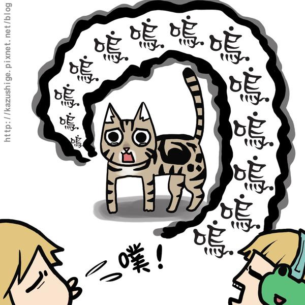 貓奴9-4.jpg