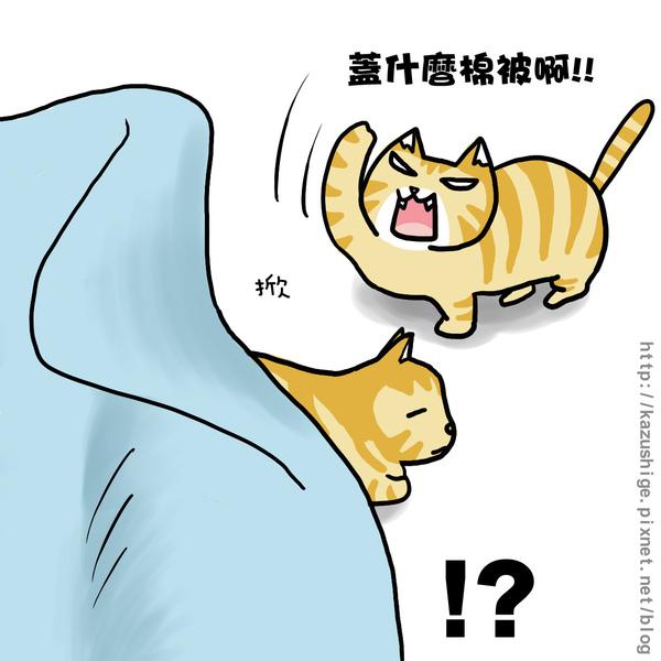 貓奴11-3.jpg