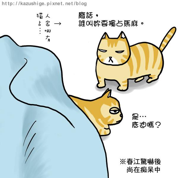 貓奴11-4.jpg