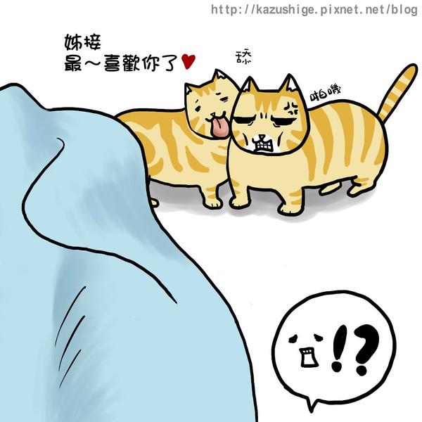 貓奴11-5.jpg