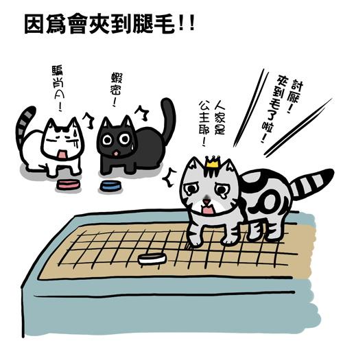 街頭巷尾貓5-3.jpg