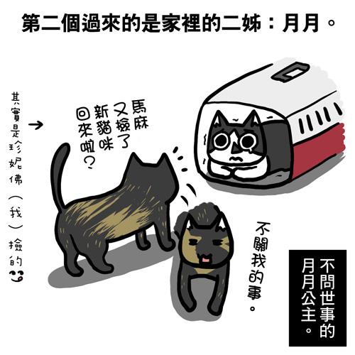 貓奴24-1.jpg