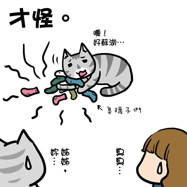 街頭巷尾貓2-4.jpg