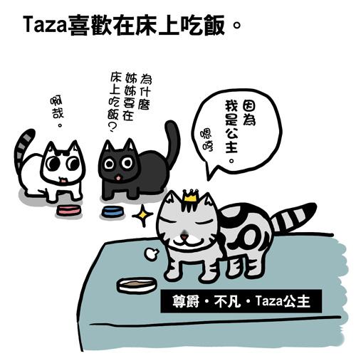 街頭巷尾貓5-1.jpg