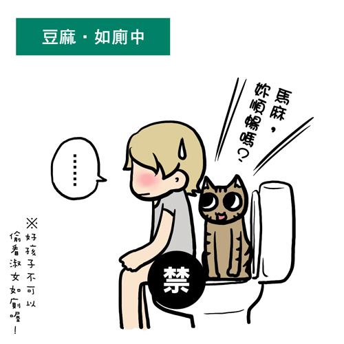 街頭巷尾貓4-1.jpg