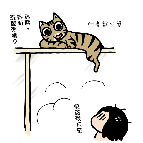 街頭巷尾貓3-3.jpg