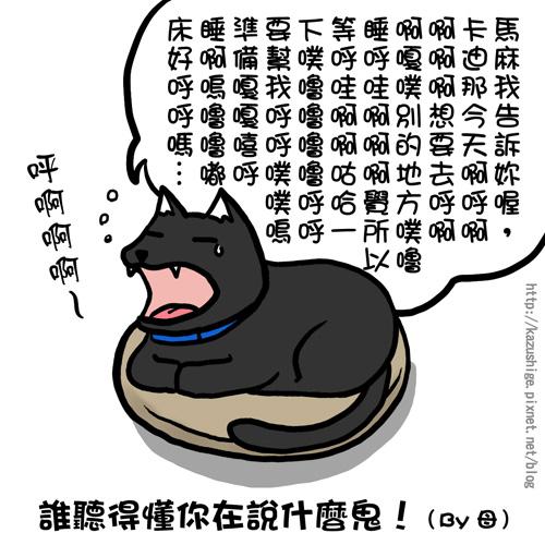 街頭巷尾貓6-3.jpg