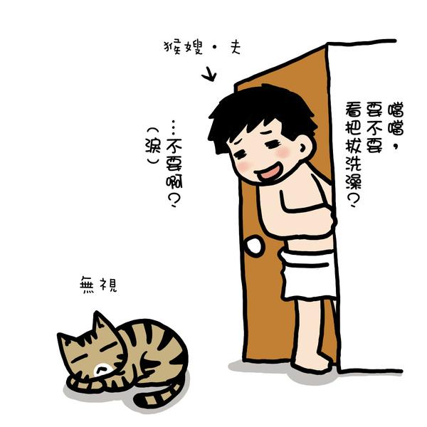 街頭巷尾貓3-5.jpg