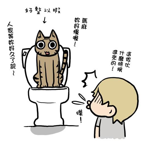 街頭巷尾貓4-3.jpg