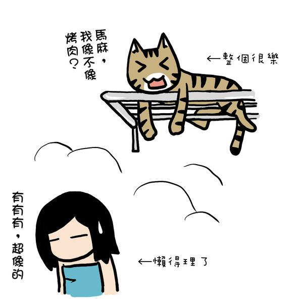 街頭巷尾貓3-4.jpg