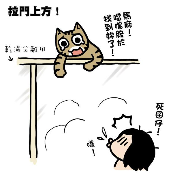 街頭巷尾貓3-2.jpg