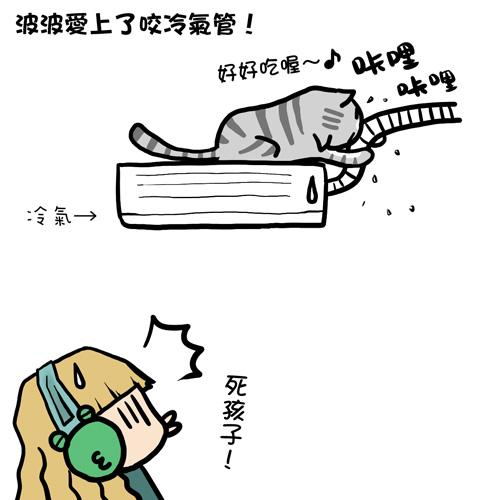 貓奴22-1.jpg
