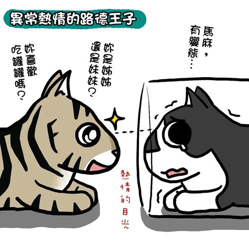貓奴24-2.jpg