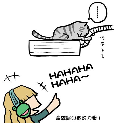 貓奴22-5.jpg