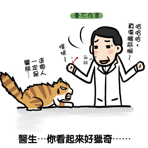 街頭巷尾貓7-2.jpg