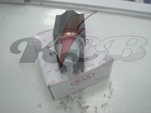 DSC06521-002