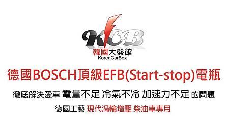 電瓶EFB方-crop.jpg