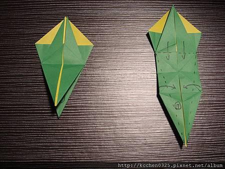 摺紙鸚鵡 (5)