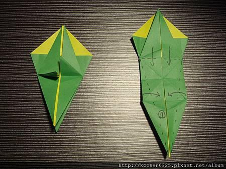摺紙鸚鵡 (6)