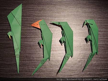 摺紙鸚鵡 (11)