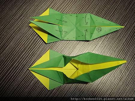 摺紙鸚鵡 (19)
