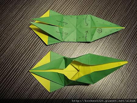 摺紙鸚鵡 (20)