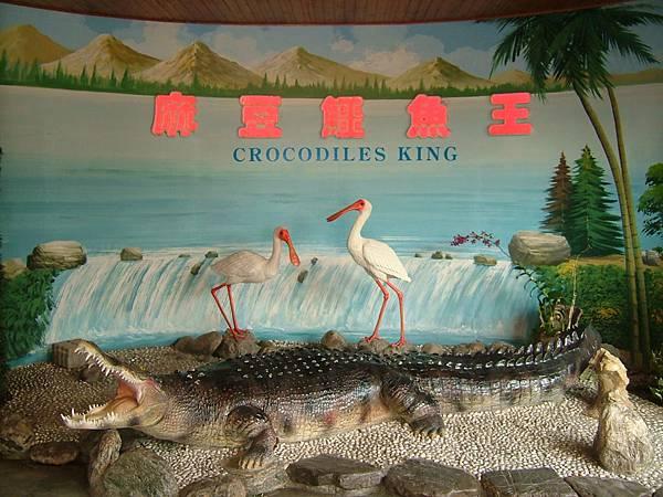 台南麻豆鱷魚王
