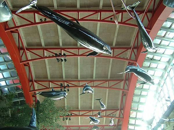 國立海洋生物博物館大廳