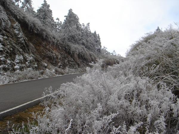 太平山─雪景
