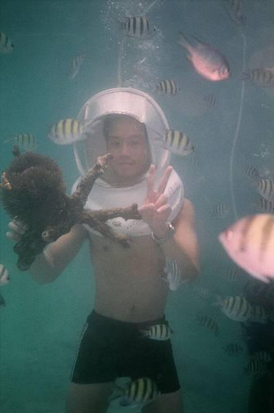 海底慢步珊瑚+小丑魚