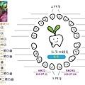 牙齒圖-1.jpg