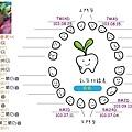 牙齒圖-2.jpg