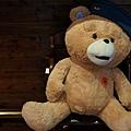 帶帽子的熊