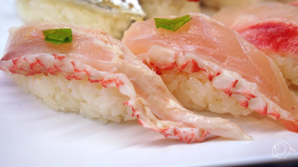 長尾鳥握壽司