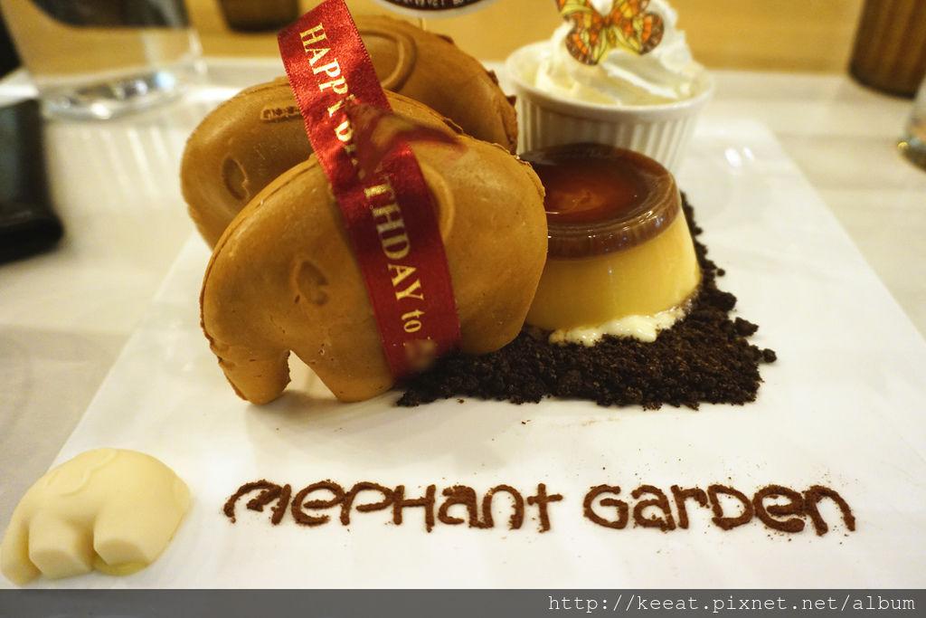 生日小象鬆餅