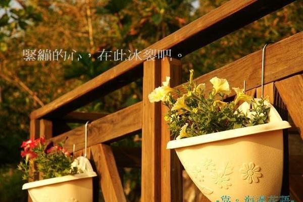 右陽台小花.jpg